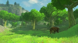 WiiU_TheLegendofZeldaBreathoftheWild_E32016_background_12.jpg